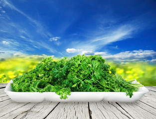 Bunch of ripe parsley isolated on white background