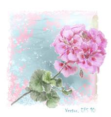 hand drawn  watercolor pink geranium flower