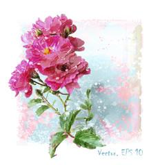 hand drawn  watercolor pink roses