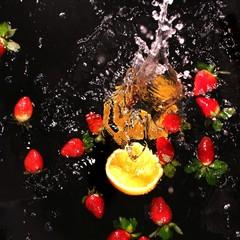 Stillleben - Obst