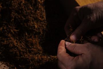 Fine cut tobacco background