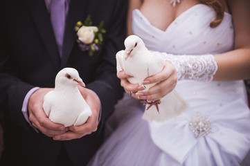 dride and groom holding white pigeons