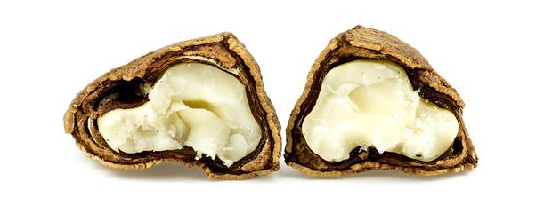 Brazil nut cracked open showing inside meat