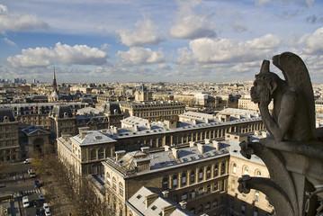 Paris Notre Dame Gargoyle