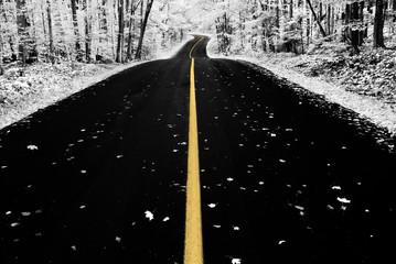 Infrared Autumn Road