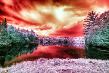 Infrared Alien Landscape Under a Blood Red Sky © SHS Photography