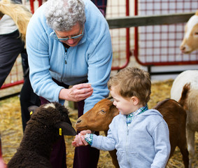 Boy and Grandmother Feeding Animals