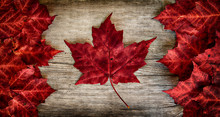 "Постер, картина, фотообои ""Canadian Flag made out of real Maple Leaves on a Cedar backing"""
