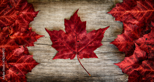 Foto op Canvas Canada Canadian Flag made out of real Maple Leaves on a Cedar backing