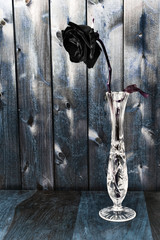 Black Rose in a Glass Vase on Rustic Wood