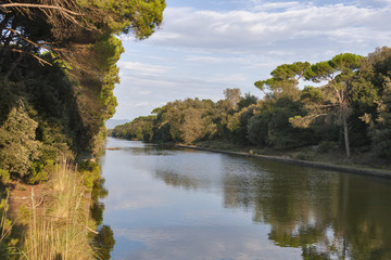 Channel of San Rossore Regional Park, Italy