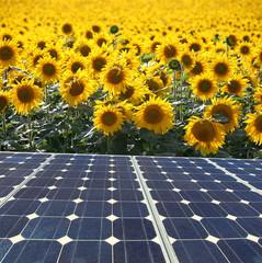 energia renovable 2-f15
