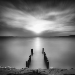 wooden plants over sea taken with long exposure and monochrome