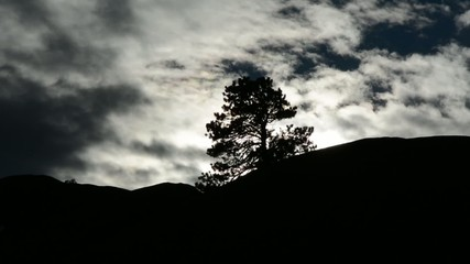 Time lapse of clouds moving past a silhouetted tree