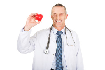 Mature male doctor holding heart model
