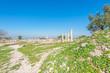 Umm Qais is a town in northern Jordan near the Gadara
