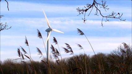 Windmill in Germany 01