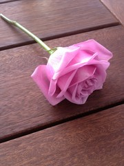 Tallo de rosa