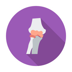 Knee-joint single flat icon.