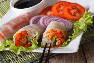 Vietnamese vegetable spring rolls with sauce, horizontal