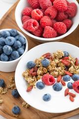 homemade muesli with fresh berries, nut and yogurt for breakfast