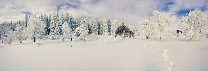 Winter morning in the Carpathian village.