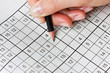 woman hand holding a pencil and solves crossword sudoku - 76299057