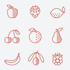 Fruit icons, thin line style, flat design