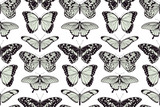 Butterfly seamless vintage background
