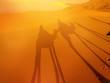 Zdjęcia na płótnie, fototapety, obrazy : Desert landscape with camel shadow.