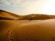 Desert landscape. - 76301071