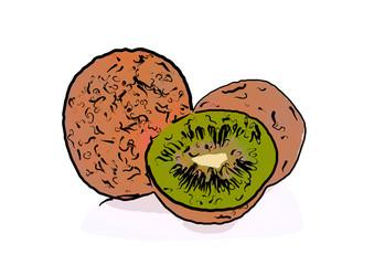 Drawn kiwi