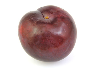 Front view of plum on white background.