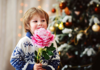 Boy portrait  in the christmas studio with flower