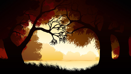 Horizontal illustration within forest.