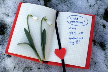 Erinnerung an Valentinstag mit Schneeglöckchen