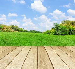 Perspective wood over blur landscape background
