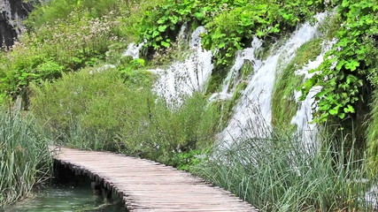 Wooden Path and Waterfall