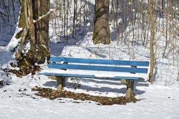 Blaue Bank im Schnee
