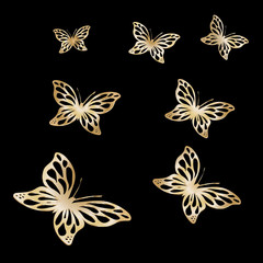 Gold Lace butterfly on black background
