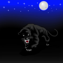Panther on night hunting