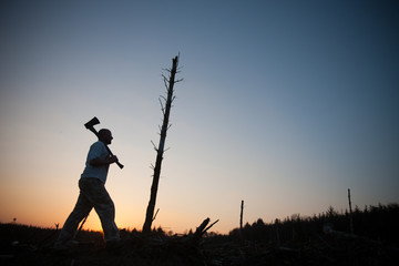 man with axe walks past last standing tree at sunset