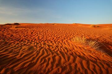 Sand desert landscape, Wahiba Sands, Oman