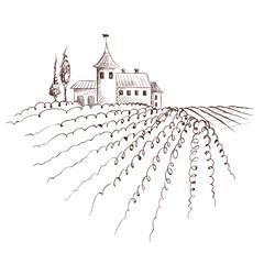 Vintage landscape with vineyard