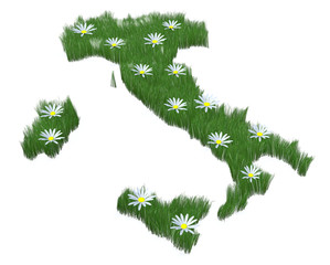 Italy made with grass and many daisy