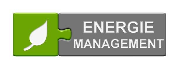 Puzzle Button: Energiemanagement