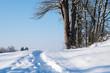 canvas print picture - Weg im Schnee
