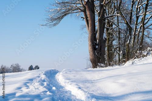 canvas print picture Weg im Schnee