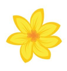 Cartoon illustration of flowers
