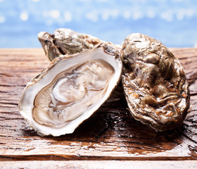 Oysters on wood.